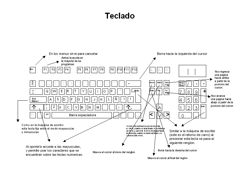 Entre el teclado de una maquina de escribir y el de una computadora ...